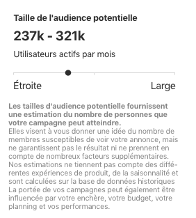 AgneceSW-Campagne-Publicitaire-Pinterest-estimation-audience